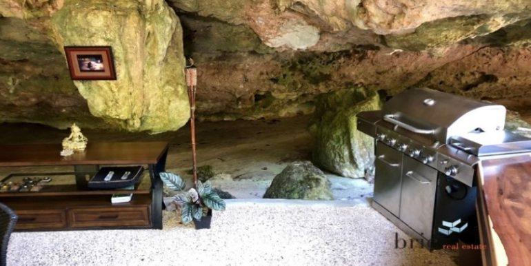 Cenote Ixtlan_Bricrealestate_2